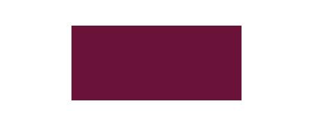 SY_MINI_logo