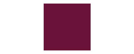 SY_OZAS_logo